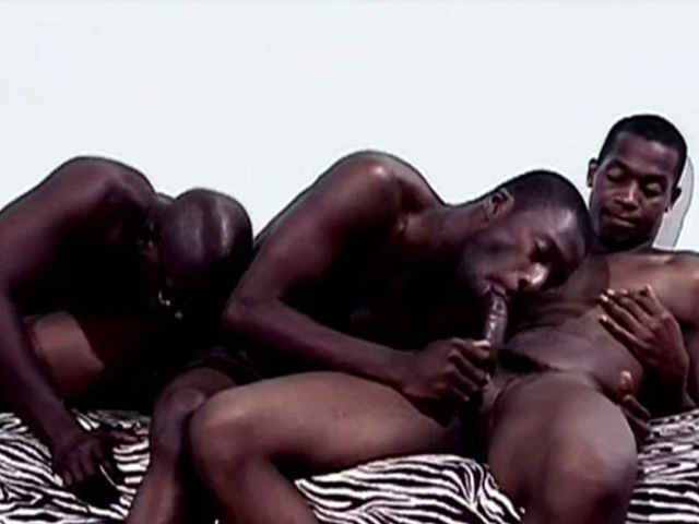 Black Gay Pleasure Performs Oral